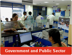 Government and Public Sector
